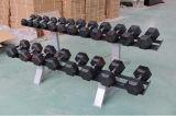 Conjuntos de goma de la pesa de gimnasia del hexágono del equipo de la gimnasia para Crossfit