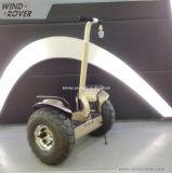 Scooter électrique de reste de char de rouleau de la vente en gros deux de la Chine
