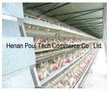 Das heiße BAD, das heißes Verkaufs-Schicht-Geflügel galvanisiert, sperrt Huhn-Haus-landwirtschaftliche Maschinen ein