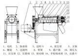 De Machine van de Trekker van het Sap van de Granaatappel van de Peer van de Ananas van Ginge van het roestvrij staal