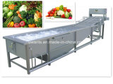 De professionele Wasmachine van de Luchtbel Vegetable&Fruit