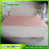 Shandong 중국에 있는 가구를 위한 좋은 가격 합판을%s 가진 최고 판매
