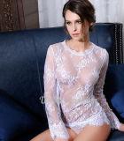 Lingerie sexy chaude de lacet transparent blanc d'usine d'OEM