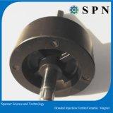 De Rotor van de Magneet van de Injectie van Bodnde van het ferriet voor Motor