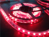 Flexibler LED Streifen der wasserdichten 5050SMD DC12V rosafarbenen Farben-