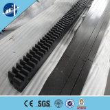 Grua da construção para construir com exportação aprovada BV Arábia Saudita do ISO