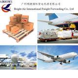Vervoer van het Schip van de Luchtvracht van de Vrachtvervoerder Van China aan wereldwijd