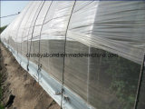 HDPE 50mesh Gewächshaus-Plastikinsekt fängt Ineinander greifen