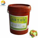 Seaweed Extract에서 유기 Fertilizer Biological Leaf Fertilizer