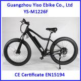 750W 뚱뚱한 타이어 전기 산악 자전거