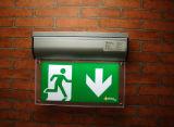 Segni di prova d'autoverifica dell'uscita di sicurezza del LED