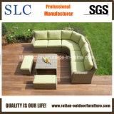 Sofá da sala de estar (SC-A7626)