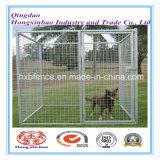 Canil galvanizado do cão, gaiola do engranzamento de fio