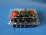 FDAの証明書が付いているペット良質のフルーツの包装のクラムシェル170グラム