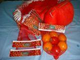 Pp.-PET Plastiktyp Großverkauf GemüseExtured Frucht-Ineinander greifen-Nettobeutel mit kundenspezifischem Firmenzeichen