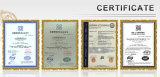Genehmigte Selbst-Aufrichtender Turmkran des Aufbau-Qtz100 (TC6010) mit Cer und ISO9001