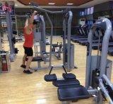 Máquina recta asentada A6-002A de la gimnasia de la prensa del pecho del clip del brazo