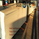 Lopende band van het Blad van pvc WPC de Decoratieve Marmeren
