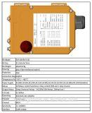 10 Tasten eine Geschwindigkeit explosionssicheres industrielles drahtloses FernsteuerungsF24-10s