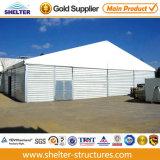 Sale를 위한 10*15m Asphalt Waterproof Tent