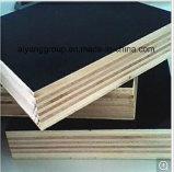 Madera contrachapada Shuttering hecha frente película del encofrado de la construcción de la madera contrachapada con base del álamo