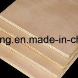 Contre-plaqué commercial de pente de BB/CC pour l'emballage, les meubles et la construction