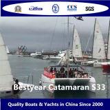 BestyearのカタマランS33