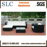 Il sofà per esterno, sofà del rattan del rattan ha impostato (SC-B8851)
