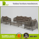 أثاث لازم خارجيّة أريكة قطاعيّ بالجملة, [دغس-0071] أثاث لازم أريكة مجموعة