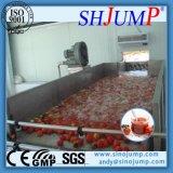 Chaîne de fabrication découpée de tomates