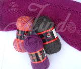 Filato nomade 50%Acrylic 50%Wool che lavora a mano il fornitore cinese del filato (Jd-8044)