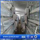 Huhn-Schicht-Rahmen-System für Verkauf