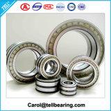 Cuscinetto a rullo di Cylidrical, cuscinetti a rullo cilindrici di doppia riga