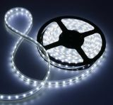 SMD 3528 Flex Impermeabile-Silicone Strip (3528, 300LED/Reel)