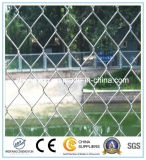 低価格のエレクトロによって電流を通されるチェーン・リンクの塀(工場)