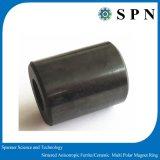常置亜鉄酸塩の磁石のMultipole異方性リング
