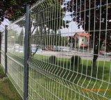 Grüne Farben-geschweißter Maschendraht-Zaun
