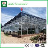 Glas/de Holle Aangemaakte Serre van het Glas met het Systeem van de Ventilatie