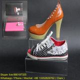 Chaussures et présentoir acryliques de sacs