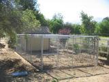 固体棒実行の6つの犬の犬小屋のバルモラルのブロック
