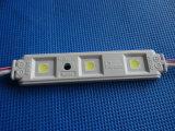 Lumière directe de module de l'injection 3LEDs DEL d'usine pour le signe
