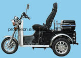 Triciclo per il motorino Handicapped di /Disabled