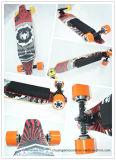 신제품 다채로운 대중적인 고품질 이중 드라이브 전기 스케이트보드