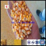 Macchina di secchezza a bassa temperatura dell'essiccatore del mais