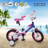 El últimos modelo y precios de la bici con el certificado Jsk-Gkb-018 del CE