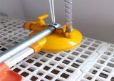 Broiler ChickenまたはPoultry Farm Equipmentの自動Feed System