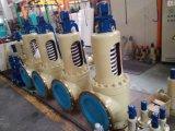 Wcb 또는 탄소 강철 안전 밸브 플랜지
