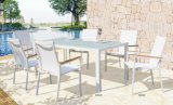 Fini blanc des meilleurs de choix de qualité de patio de poudre de bride de maille meubles enduits en aluminium extérieurs de tissu