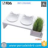Los accesorios dobles del animal doméstico del crisol de la hierba del gato del tazón de fuente del animal doméstico venden al por mayor