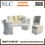 Mobilia esterna stabilita del nuovo sofà esterno del tessuto (SC-A7517)